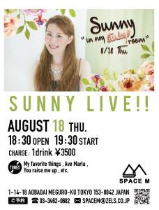sunny_flyer